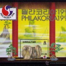 Sellos: GIBRALTAR 1994 - PERROS - 1 HOJITA BLOQUE (PHILAKOREA). Lote 49249110