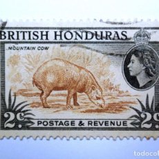 Sellos: SELLO POSTAL BRITISH HONDURAS 1953 , 2 C ,TAPIR AMERICA CENTRAL, USADO. Lote 150799014