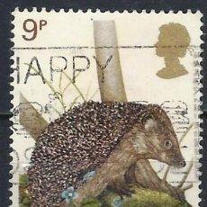 Selos: GRAN BRETAÑA 1977 - FAUNA DE GRAN BRETAÑA, ERIZO - USADO. Lote 243516155