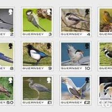 Sellos: GUERNSEY 2021 - GUERNSEY DEFINITIVE - BIRDS STAMP SET MNH. Lote 245263325