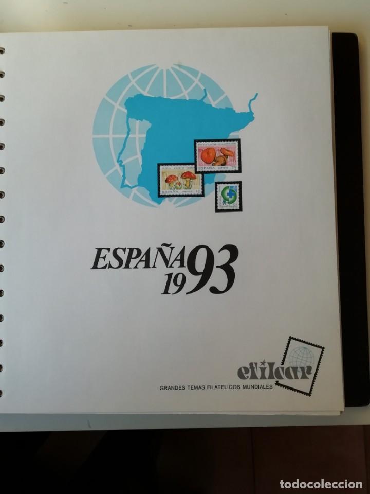 HOJAS EFILCAR ESPAÑA 1993-96. ALTA CALIDAD, VER DESCRIPCIÓN (Sellos - Material Filatélico - Hojas)