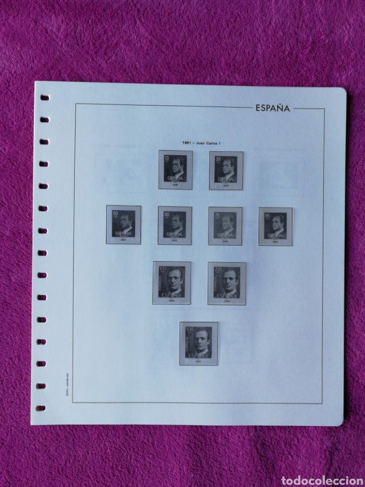 HOJAS EDIFIL AÑO 1981 COMPLETO (FOTOGRAFÍAS REALES) (Sellos - Material Filatélico - Hojas)