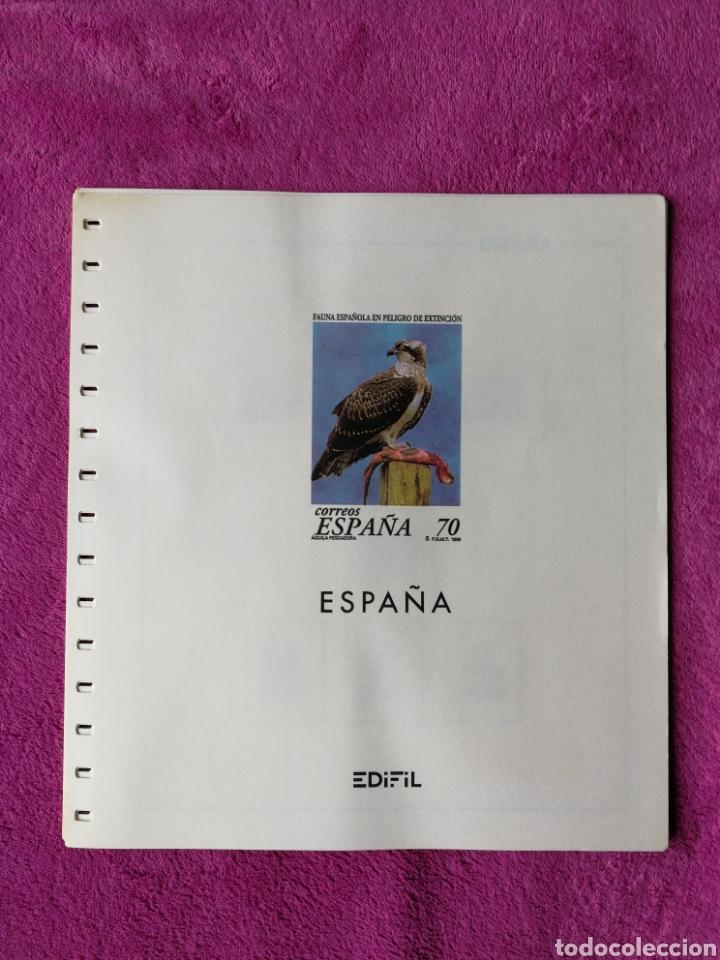 HOJAS EDIFIL AÑO 1999 COMPLETO(FOTOGRAFÍAS REALES) (Sellos - Material Filatélico - Hojas)