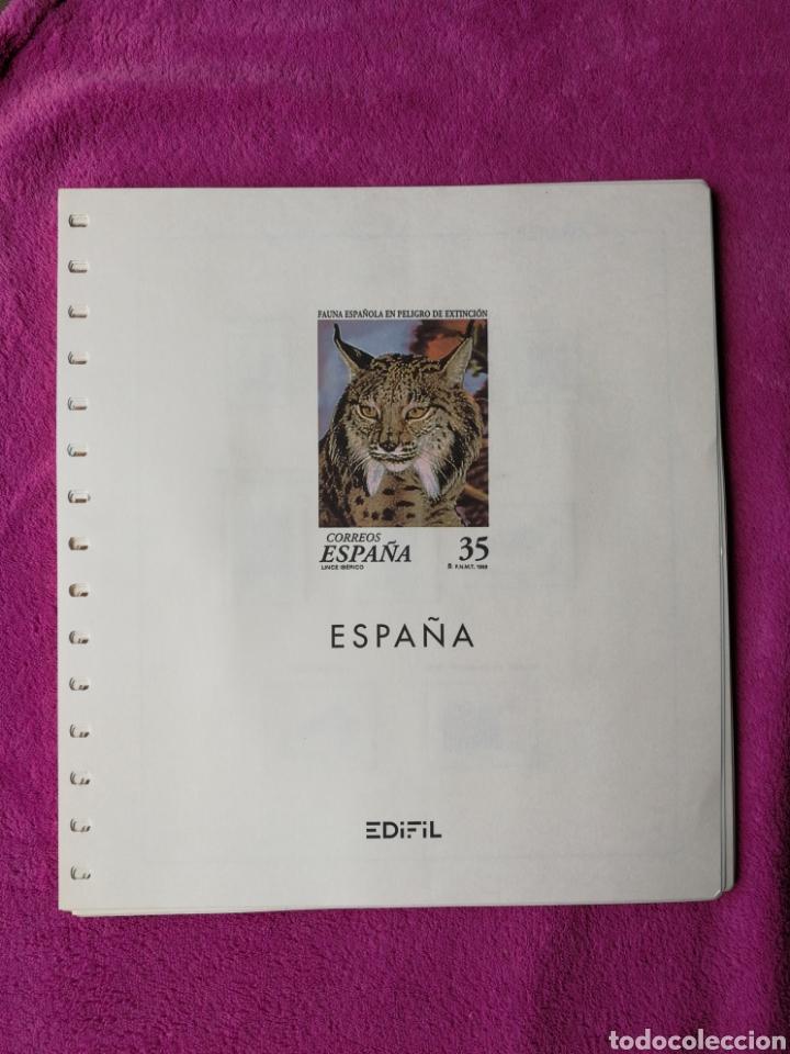 HOJAS EDIFIL AÑO 1998 COMPLETO (FOTOGRAFÍAS REALES) (Sellos - Material Filatélico - Hojas)