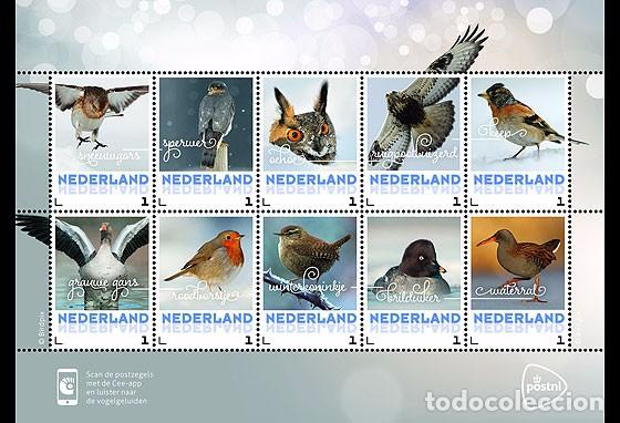 NETHERLANDS 2017 - WINTER BIRDS SOUVENIR SHEET MNH (Sellos - Extranjero - Europa - Holanda)