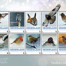 Sellos: NETHERLANDS 2017 - WINTER BIRDS SOUVENIR SHEET MNH. Lote 90380340