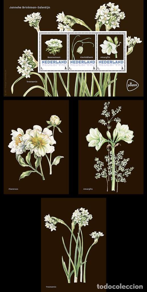 NETHERLANDS 2017 - SPRING FLOWERS SOUVENIR SHEET MNH (Sellos - Extranjero - Europa - Holanda)