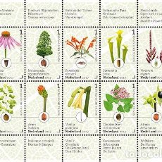 Sellos: NETHERLANDS 2017 - BOTANICAL GARDENS IN THE NETHERLANDS SOUVENIR SHEET MNH. Lote 90381024