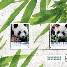 Sellos: NETHERLANDS 2017 - GIANT PANDAS SOUVENIR SHEET MNH. Lote 90381236