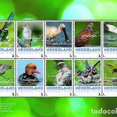 Sellos: NETHERLANDS 2017 - SUMMER BIRDS SOUVENIR SHEET MNH. Lote 90381584