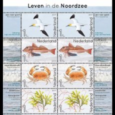Sellos: NETHERLANDS 2017 - LIFE IN THE NORTH SEA SOUVENIR SHEET MNH. Lote 100404795