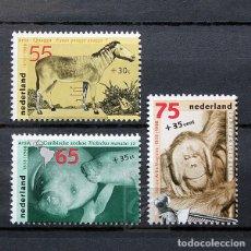 Sellos: HOLANDA 1988 ~ ZOO ARTIS EN AMSTERDAM ~ SERIE NUEVA MNH LUJO. Lote 182768720