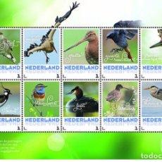 Sellos: NETHERLANDS 2017 - SPRING BIRDS SOUVENIR SHEET MNH. Lote 187395077