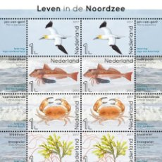 Sellos: NETHERLANDS 2017 - LIFE IN THE NORTH SEA SOUVENIR SHEET MNH. Lote 187396046