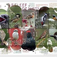 Sellos: NETHERLANDS 2020 - EXPERIENCE NATURE - FOREST & HEATHLAND BIRDS - MINIATURE SHEET. Lote 221158718