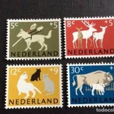 Sellos: HOLANDA Nº YVERT 792/5*** AÑO 1964, CENTENARIO SOCIEDAD PROTECTORA DE ANIMALES. Lote 222396757