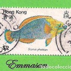 Sellos: HONG KONG - MICHEL 371 - YVERT 365 - PECES - PEZ LORO DE BANDAS AZULES. (1981).. Lote 217266202
