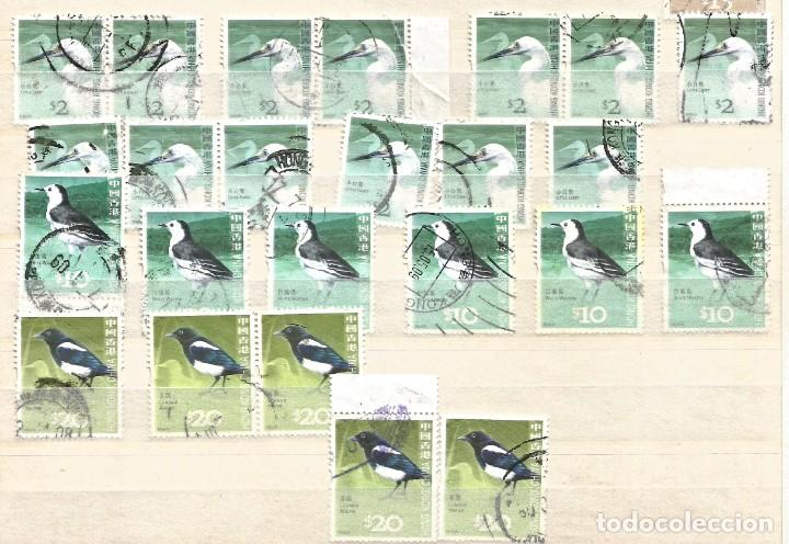 Sellos: HONG KONG - LOTE 43 SELLOS PÁJAROS - USADOS - Foto 4 - 262301185