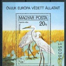 Sellos: HUNGRIA 1980 HB IVERT 150 *** AÑO EUROPEO POR LA PROTECCIÓN DE LA NATURALEZA - FAUNA - AVES. Lote 118918991