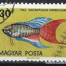 Timbres: HUNGRÍA 1962 - PECES TROPICALES, PEZ DEL PARAÍSO - USADO. Lote 230007605