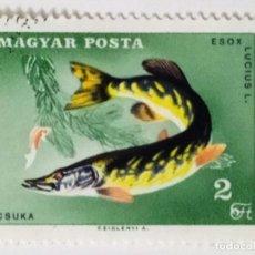 Sellos: SELLO DE HUNGRIA 2 FT - 1967 - CONGRESO PESCADORES - USADO SIN SEÑAL DE FIJASELLOS. Lote 268308219