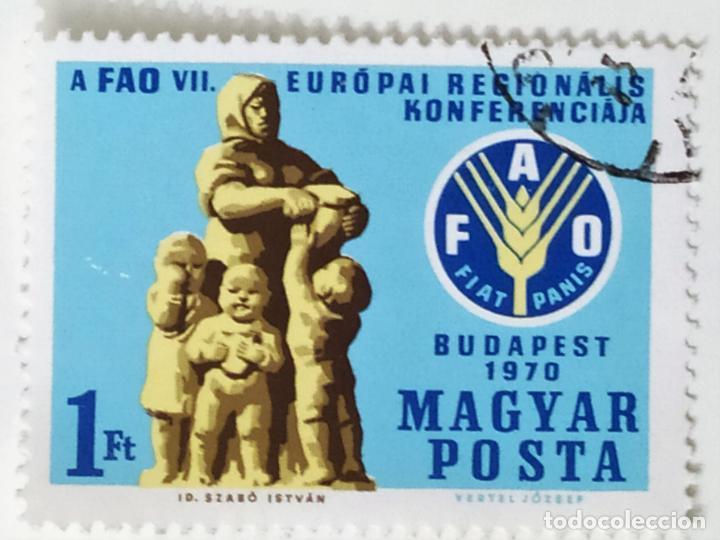 SELLO DE HUNGRIA 1 FT - 1970 - FAO - USADO SIN SEÑAL DE FIJASELLOS (Sellos - Extranjero - Europa - Hungría)