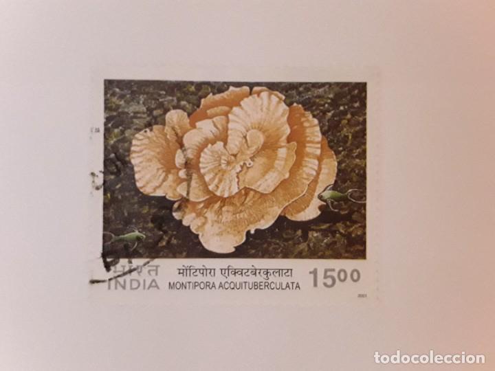 AÑO 2001 INDIA SELLO USADO (Sellos - Extranjero - Asia - India)