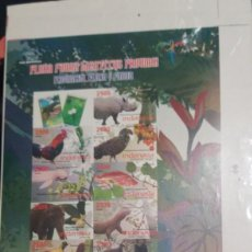 Sellos: O) 2009 INDONESIA, PRUEBA, FLORA Y FAUNA, RHINOCEROS, GALLUS, SCHLELEMACHERI, ORCAELLA, LUTJANUS, EL. Lote 234769760