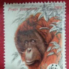 Selos: INDONESIA 1989.. Lote 289513848