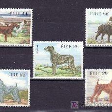 Sellos: IRLANDA 506/10 SIN CHARNELA, FAUNA, PERROS DE RAZA,. Lote 11441652