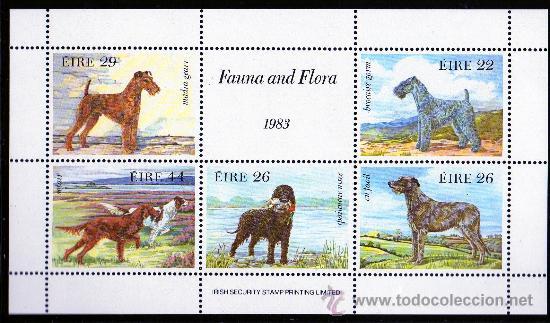 IRLANDA AÑO 1983 HB 4*** PERROS DE CAZA - FAUNA - FLORA - NATURALEZA (Sellos - Extranjero - Europa - Irlanda)