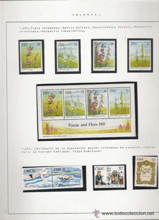 Sellos: GRAN COLECCION DE IRLANDA MONTADA EN ALBUM CON FILOESTUCHE 1950/1996 - Foto 15 - 30277754