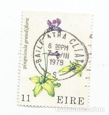 SELLO USADO DE IRLANDA DE 1978- FLORES SILVESTRES - YVERT 380- VALOR 11 PENIQUES- (Sellos - Extranjero - Europa - Irlanda)