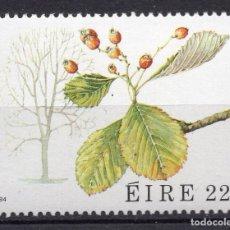 Sellos: IRLANDA, 1984, STAMP, MICHEL 532. Lote 264564714