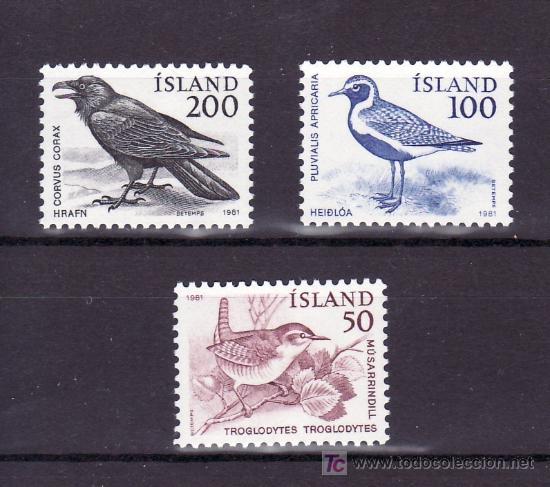 ISLANDIA 520/2 SIN CHARNELA, FAUNA, AVES, PAJARO, (Sellos - Extranjero - Europa - Islandia)