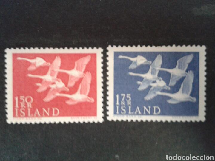 ISLANDIA. YVERT 270/1. SERIE COMPLETA NUEVA SIN CHARNELA. FAUNA. AVES (Sellos - Extranjero - Europa - Islandia)
