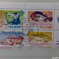 Sellos: HOJA BLOQUE DE ISLANDIA, PECES 1998. Lote 149766336