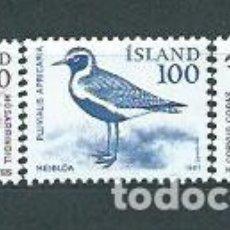 Sellos: ISLANDIA - CORREO 1981 YVERT 520/2 ** MNH AVES. Lote 159541632