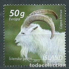 Sellos: ISLANDIA CORREO 2013 YVERT 1330 ** MNH FAUNA. Lote 159544821