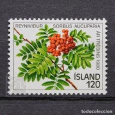 Sellos: ISLANDIA 1980 ~ FLORA: AÑO DE LOS ÁRBOLES: SORBUS AUCUPARIA ~ SELLO NUEVO MNH LUJO. Lote 178812320