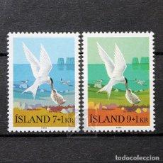Sellos: ISLANDIA 1972 ~ PROTECCIÓN DE LA NATURALEZA: AVES: STERNA PARADISAEA ~ SERIE NUEVA MNH LUJO. Lote 178908322