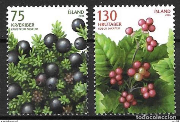 SELLOS USADOS DE ISLANDIA 2005, YT 1065/ 66 (Sellos - Extranjero - Europa - Islandia)