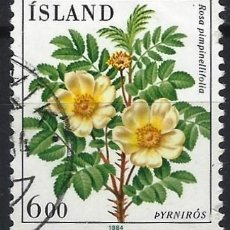 Sellos: ISLANDIA 1984 - FLORES, ROSA ESPINOSA - SELLO USADO. Lote 204748033