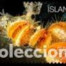 Timbres: SELLO USADO DE ISLANDIA YT 1460. Lote 224299027
