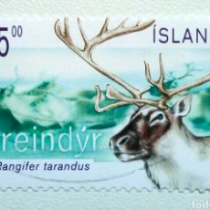 Selos: ISLANDIA 2003 FAUNA RENO SELLO USADO. Lote 268571449