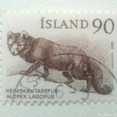 Sellos: ISLANDIA 1980 ZORRO SELLO USADO. Lote 274543168