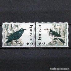 Sellos: ISLAS FEROE 1995 ~ FAUNA: AVES: CORVUS CORAX VARIUS ~ SERIE NUEVA MNH LUJO. Lote 183712691
