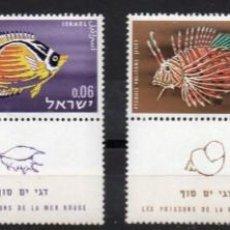 Sellos: ISRAEL AÑO 1962 YV 225/28*** PECES DEL MAR ROJO FAUNA. Lote 167040776