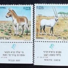 Sellos: 1971. ISRAEL. 432 / 435 CON BANDELETA. RESERVA NATURAL. ANIMALES DE LA BIBLIA. SERIE COMPLETA. NUEVO. Lote 193394593