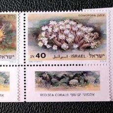 Sellos: ISRAEL. 970/72 CORALES DEL MAR ROJO: BALANOPHYLLIA, GONIOPORA, DENDRONEPHTHYA. 1986. SELLOS NUEVOS Y. Lote 211261129